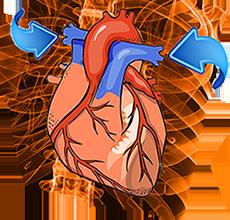 Hipertensión arterial en el embarazo